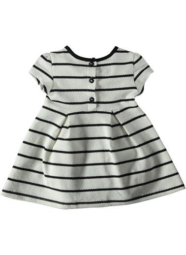 Çizgili Elbise-Locopop